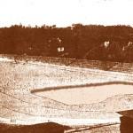 Проект Червоного стадіону ім..Л.Троцького. 1923 р.  (на передньому плані залишки басейну фонтану)